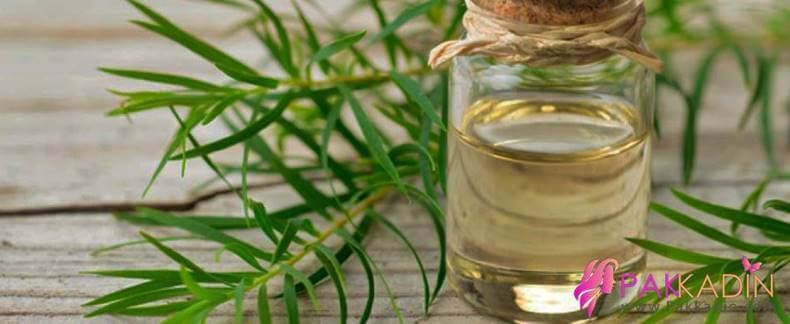 Çay Ağacı Yağı İle Benleri Temizleme
