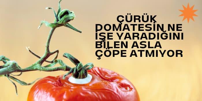 çürük domates ne işe yarar